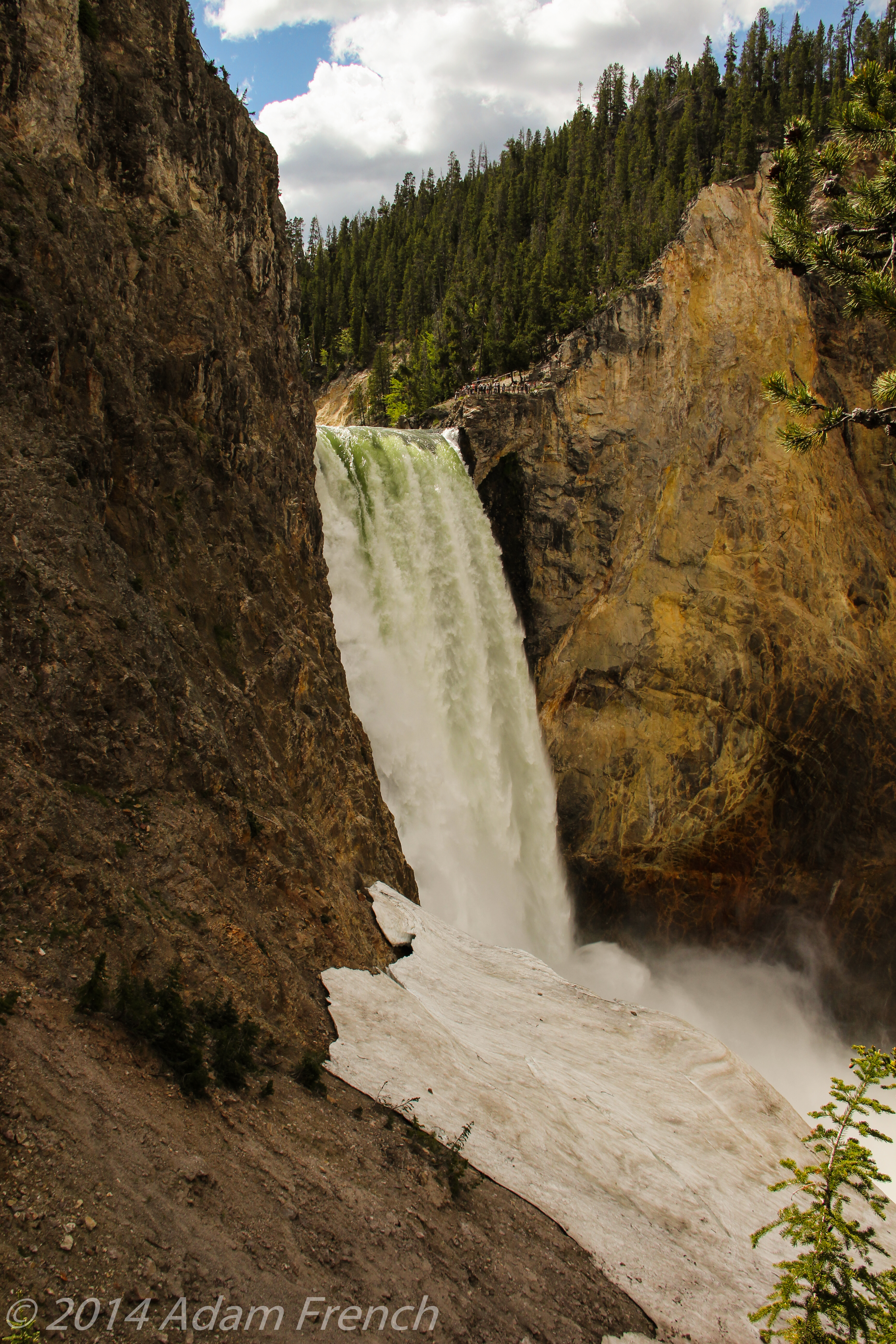 Yellowstone-0373