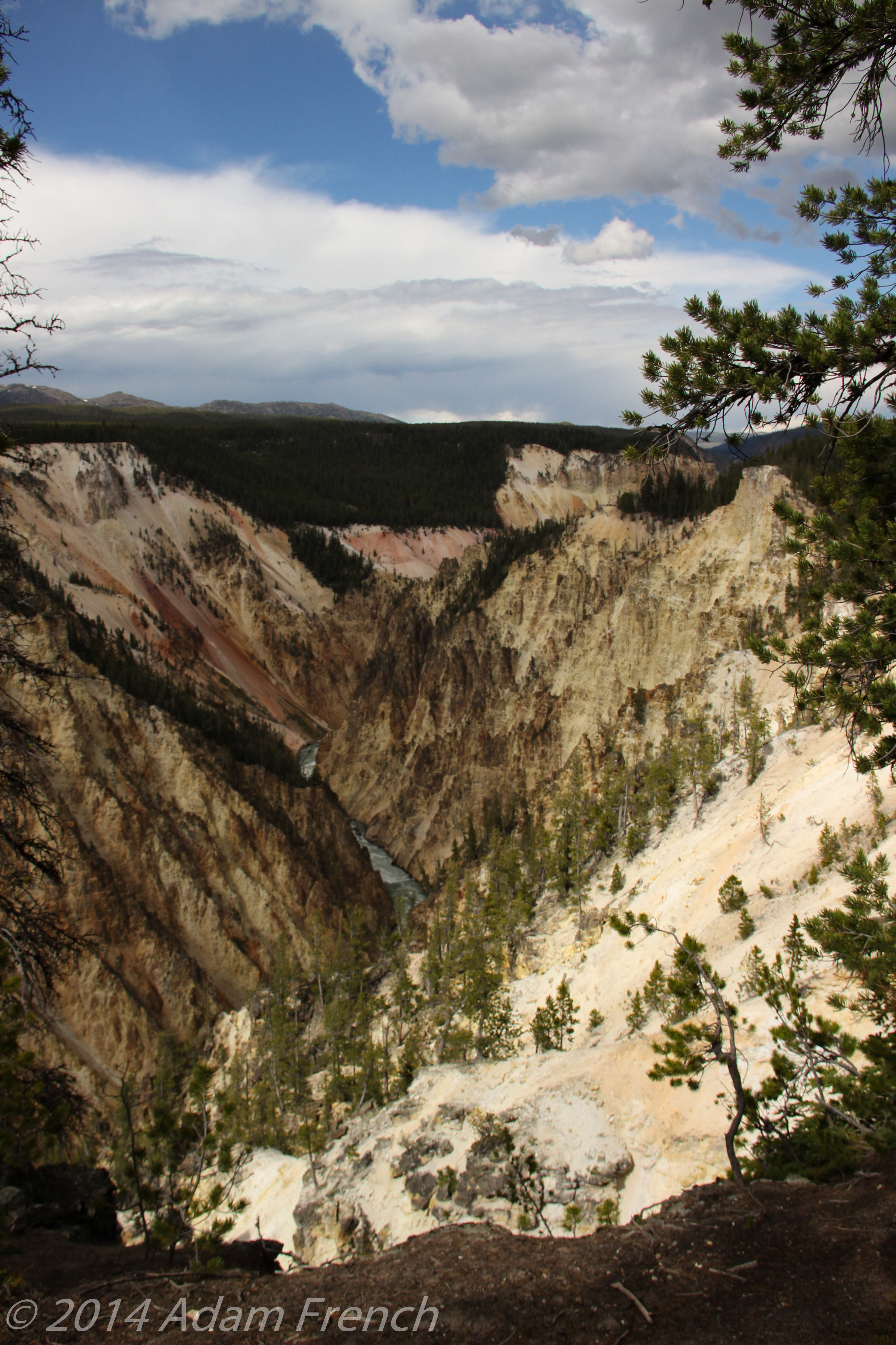 Yellowstone-0433