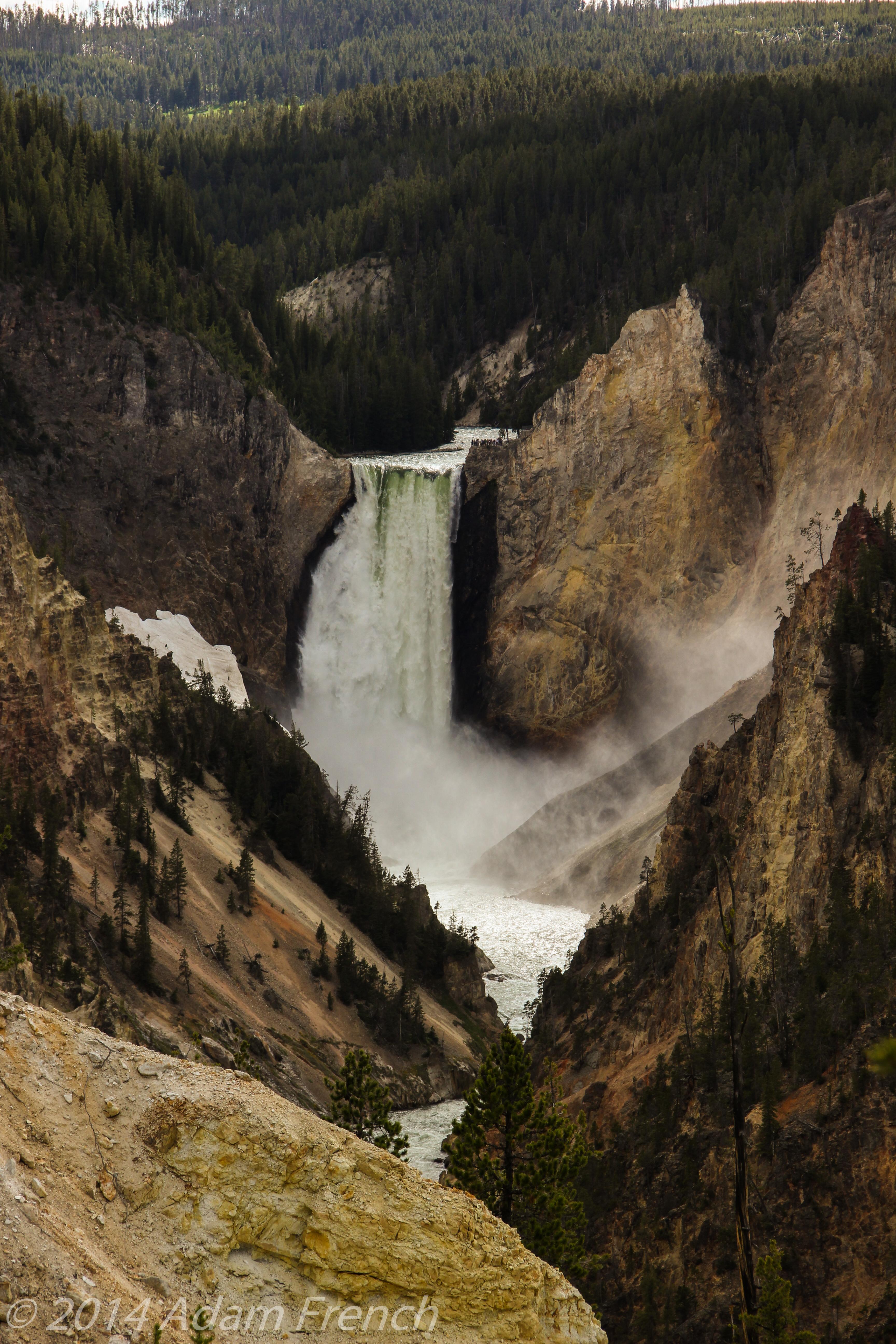 Yellowstone-0468